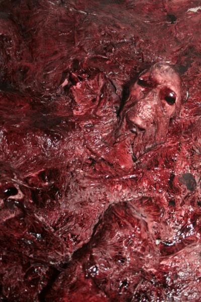 Mura di carne