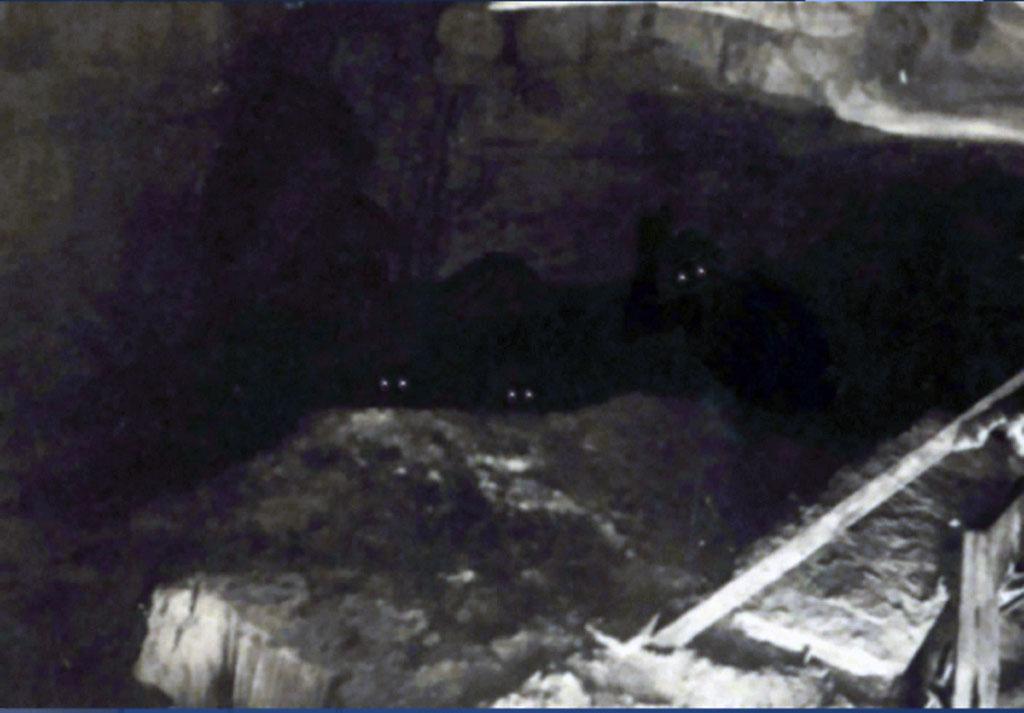 Oren Jeffries - Gli abitatori del buio delle Grand Caverns