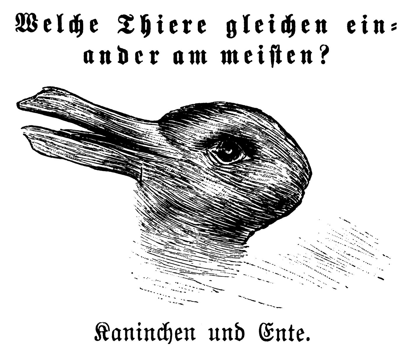 Kaninchen und Ente