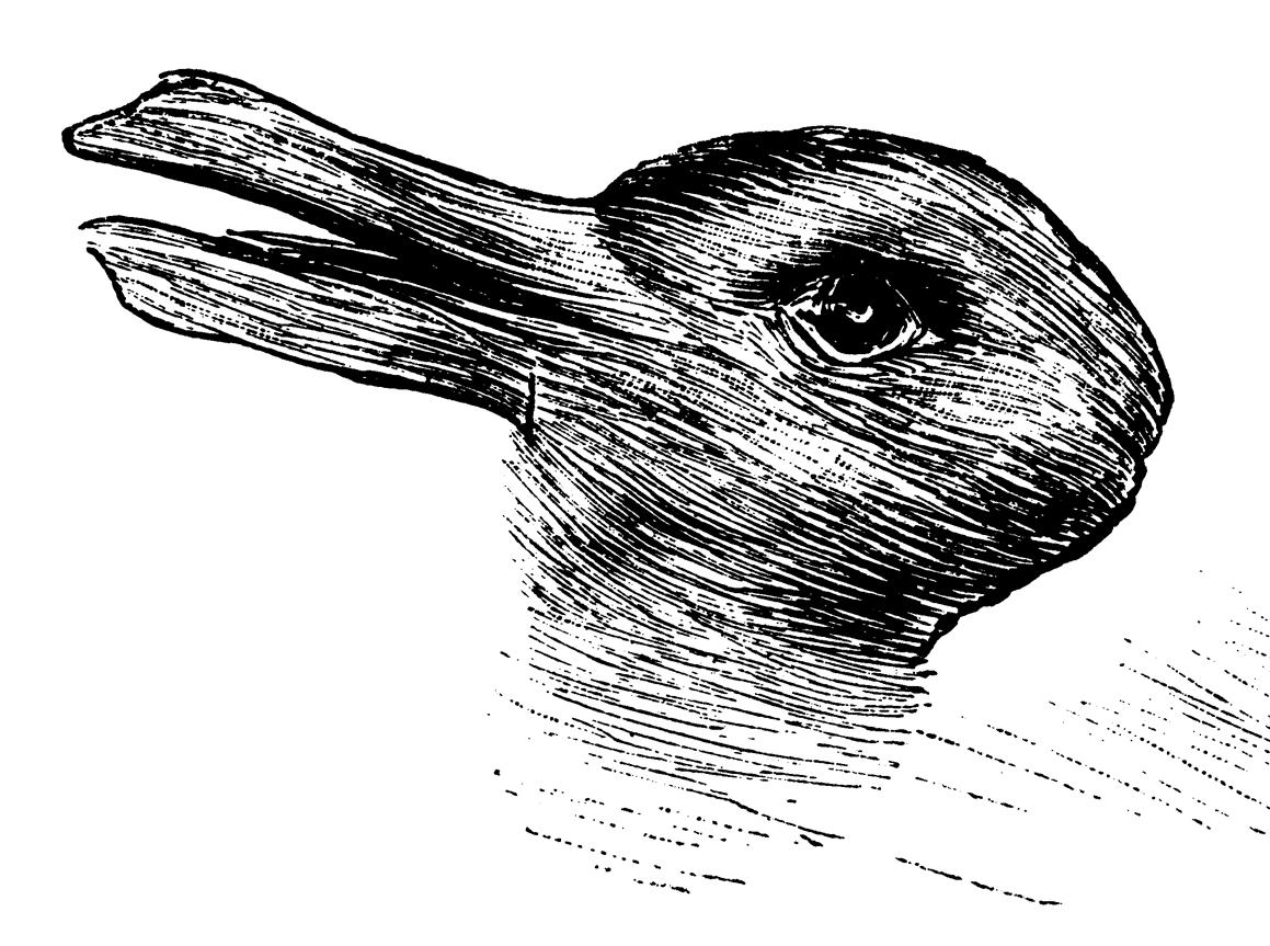 Anatra o coniglio?