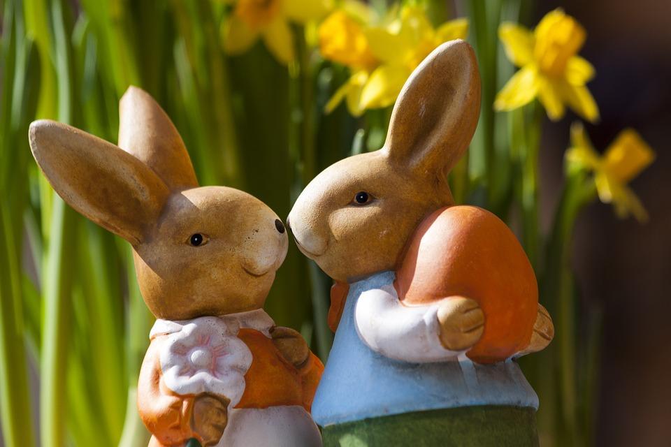 Easter Bunny Pasqua Coniglio Coppia Coniglietto